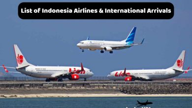 Indonesia Airlines & International Arrivals
