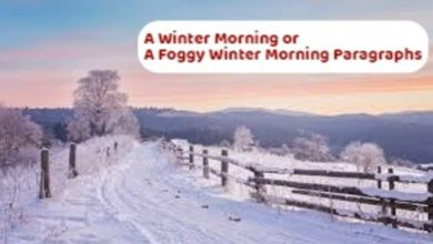 Winter Morning Paragraph